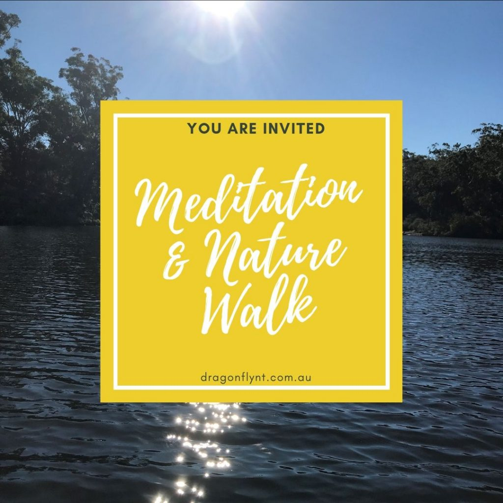 Meditation & Nature Walk
